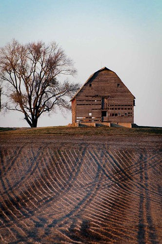 _DSC5803 Old Barn and Corduroy Fields -- how many 11-11-11's can you count?