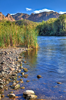 Salt River Shore