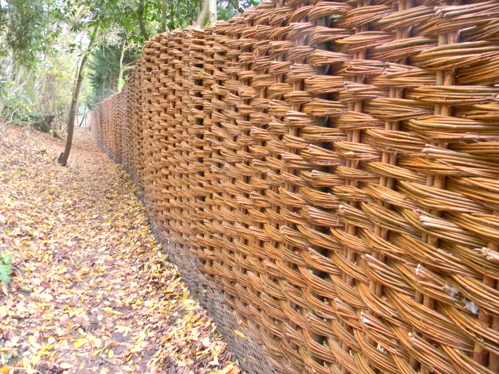 Striking fence A woven fence. What intrigued me was there were no obvious sections - suggesting it had been woven on site. Manningtree Circular