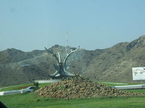 Shark Roundabout