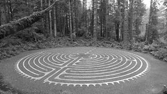 labyrinth, monochrome photography, monochrome, black-and-white,