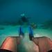 En el lecho marino