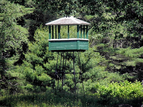 pictures new trip travel light usa color tower history film nature forest trekking walking landscape geotagged fun island photography us photo spring woods raw day image photos hiking farm live maine picture trails images richmond trail photograph fields digitalcamera preserve swanisland kennebecriver fugifilm wildlifeviewingtower rong58 sanctuaryhiking
