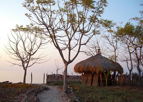nature atauro librarystudytour2011