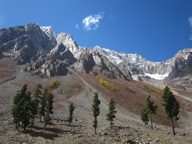 Upper Naltar Valley, Pakistan.