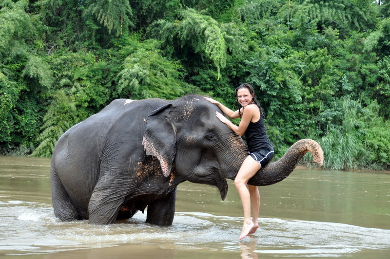 Elephant Village – Bangkok
