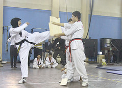 striking combat sports(1.0), hapkido(1.0), individual sports(1.0), contact sport(1.0), taekwondo(1.0), sports(1.0), tang soo do(1.0), combat sport(1.0), martial arts(1.0), karate(1.0), taekkyeon(1.0),