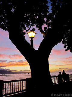 Evening in Lahaina