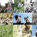2,000 VIEWS! by Enchanted♥Photography