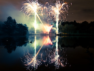 Swans and Fireworks 1