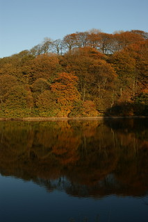 Autumn Colour reflections