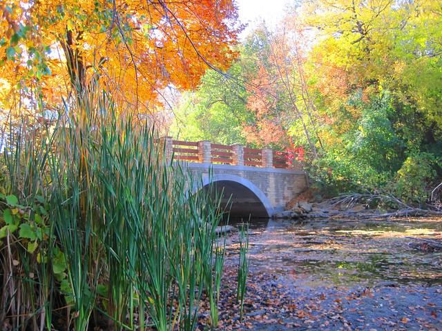 bridge at uw arboretum