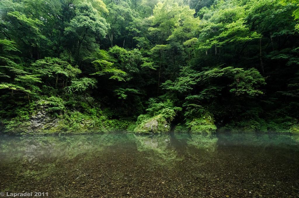 20110806 奥多摩 氷川渓谷