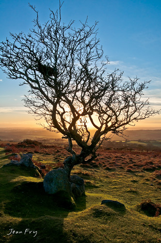 sunset devon dartmoor hawthorn moorland westcountry shaughmoor