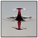 Red Stem / Round Top #3756 | ©2011 - www.liquids-in-motion.com by Liquids-in-Motion