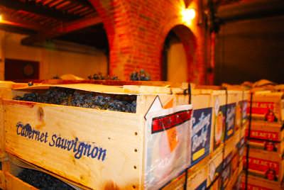 Via Vecchia Winery