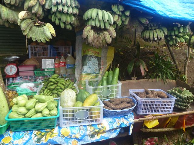 fruit & veg - oh my buhay