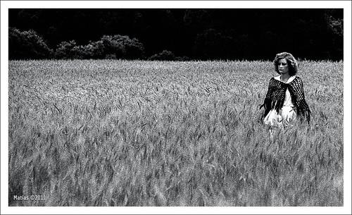 arboles cereal modelo campo trigo espigas chal