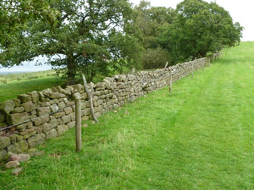 Modern wall on Roman Wall in Wall Mile 53