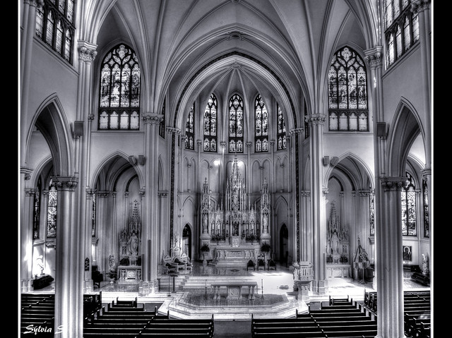 The Cathedral Basilica of The Immaculate Conception