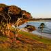 Cosy Corner, Torquay, Victoria, Australia IMG_3250_Torquay