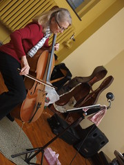 bowed string instrument, classical music, string instrument, violin, viol, fiddle, cello, string instrument,