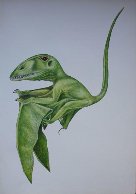 RIO_1974_Dimorphodon
