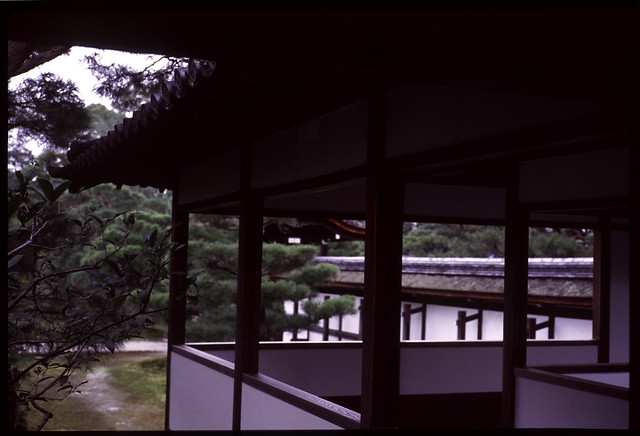 20111023_0107_Summicron-M50th_M6_Ninnaji_Kyoto