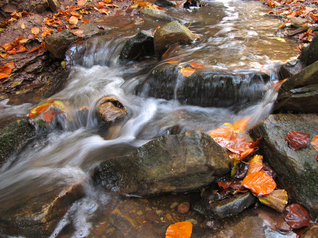 Powerful Fall Creek with tiny little Waterfalls por Uschi