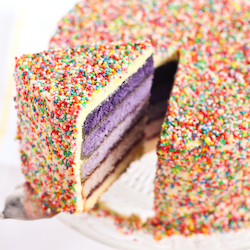 purple_ombre_sprinkle_cake-9