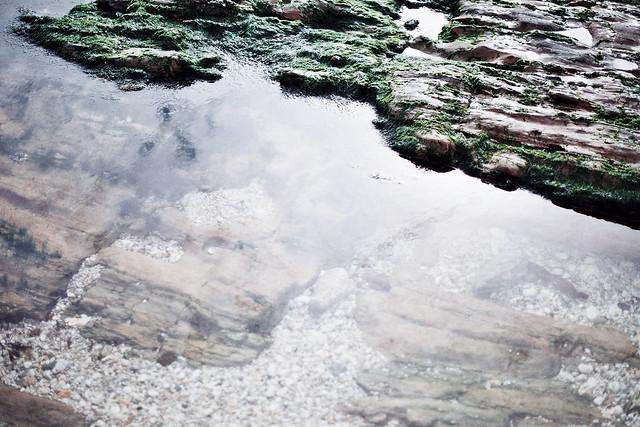 falmouth rockpool