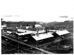 Falstad (1945)