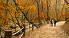 Fall, Korea