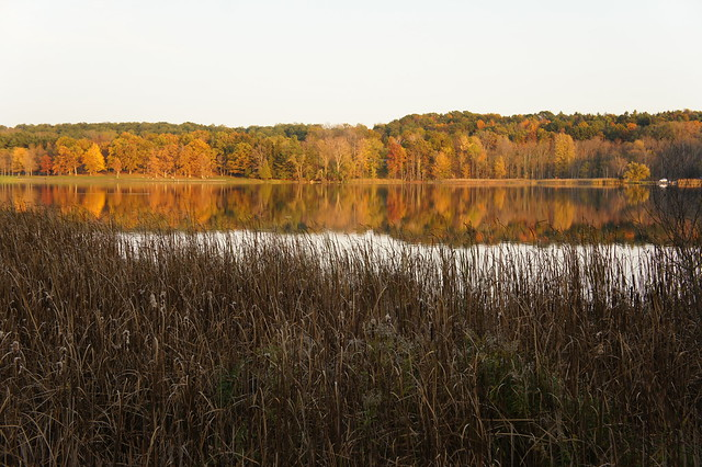 - Autumn in Mendon Ponds