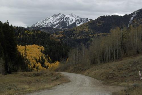 road autumn mountains fall rural landscape utah scenic foliage aspens populustremuloides