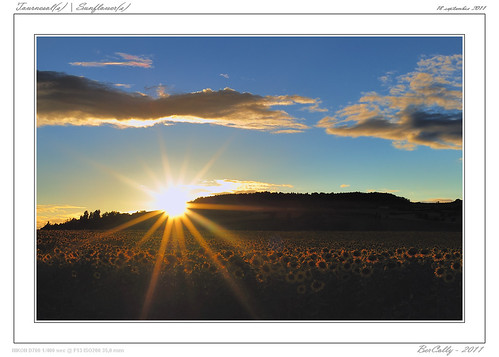 sunset sky cloud france night soleil google flickr coucher ciel nuage nuit auvergne puydedome billom bercolly