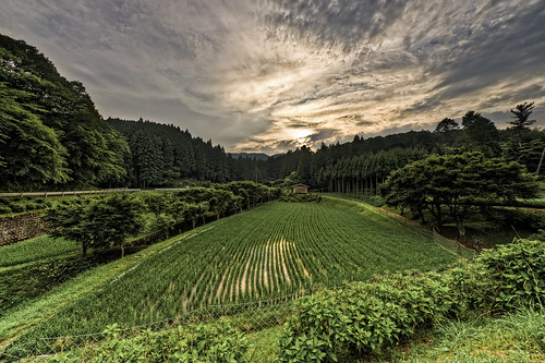 sunset house nature field japan landscape asia view web ricefield geotag hdr eol 2011 bo47 bonielsen nikond3s exposureoflifecom