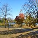 Small photo of Loring Park