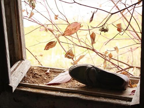 Fenster mit Schuh