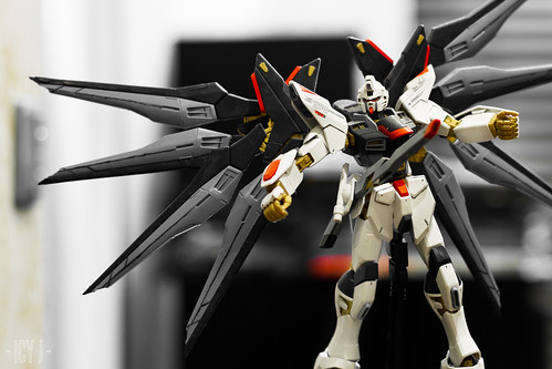 Strike Freedom.