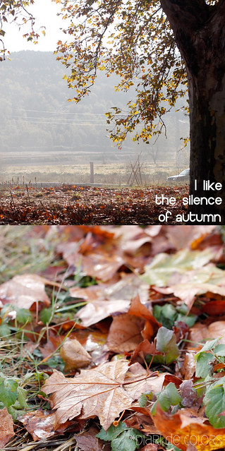 I like the silence of autumn (Dyp)