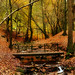 Dimmingsdale ..Alton..Staffordshire by judder1952
