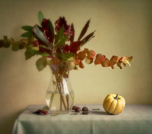 Still Life with Foliage and Marrow