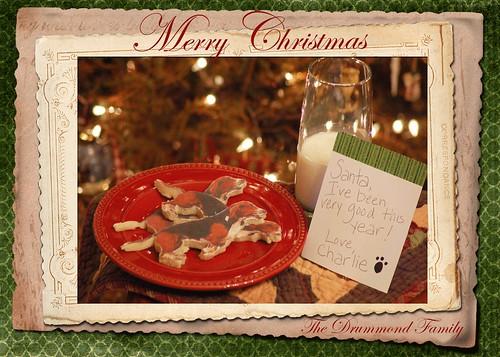 Charlie cookies