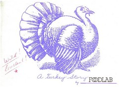 A Turkey Story