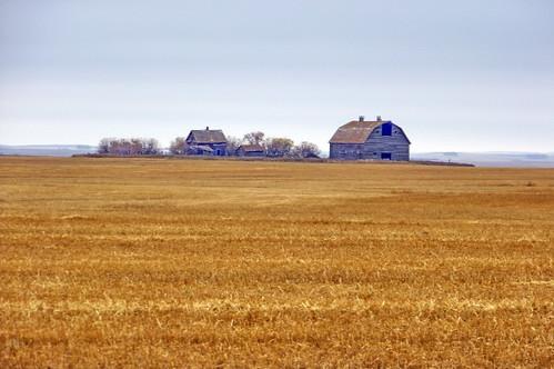 red canada color colour building barn farm sk prairie saskatchewan agriculture perdue 2011 canadagood thisdecade