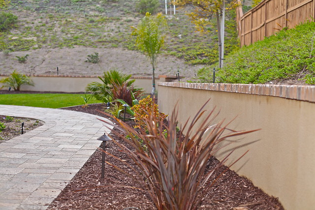 6301344914 21ea4f27de for Stucco garden wall designs