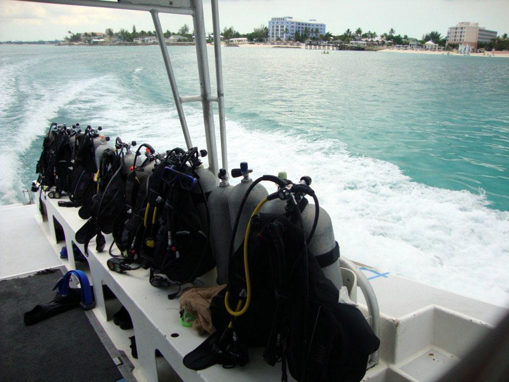 Viaje hacia una de las zonas de buceo buceo entre tiburones en las islas bahamas - 6303544138 ec695c40ef b - Buceo entre tiburones en las islas Bahamas