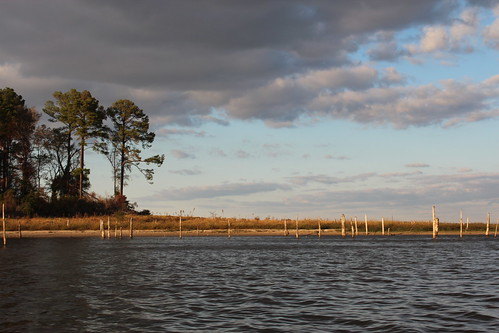 lake landscape texas tx