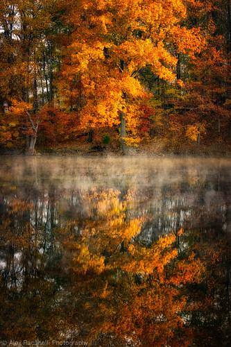 autumn newyork seasons unitedstates northamerica brewster